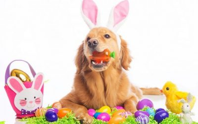 Easter operating hours