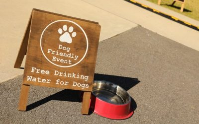 Whitby Dog Lovers Event